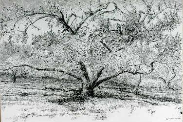 Cours de dessin au fusain et au crayon