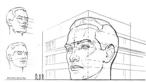perspective de la tête